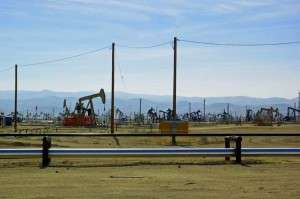 The oil field at Taft. © Ken Rodgers 2014